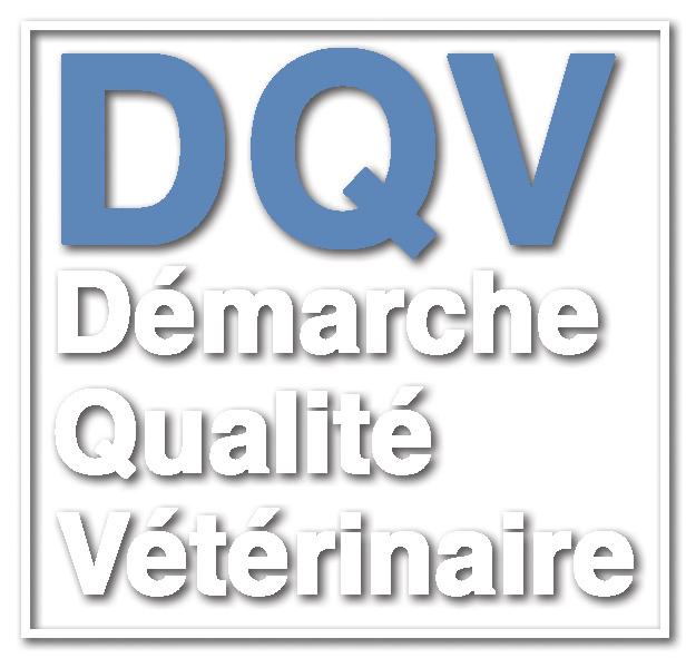 logo DQV
